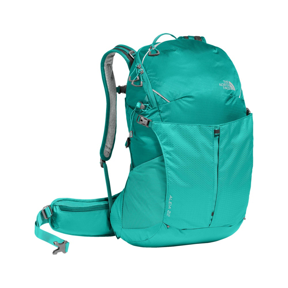 94509a75e The North Face Litus 22 Daypack (Previous Season)