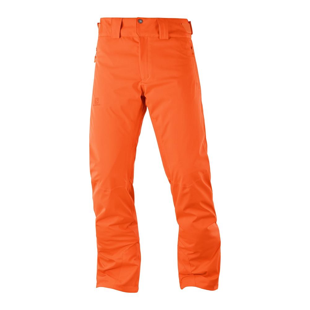 Salomon Stormrace Mens Ski Pants