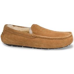 UGG Ascot Mens Slippers, Chestnut, 256