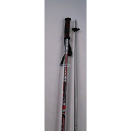 Alpina Masters Planet Kids Ski Poles, Silver-Red, 256