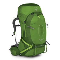 Osprey Atmos AG 65 Backpack 2017, Absinthe Green, 256
