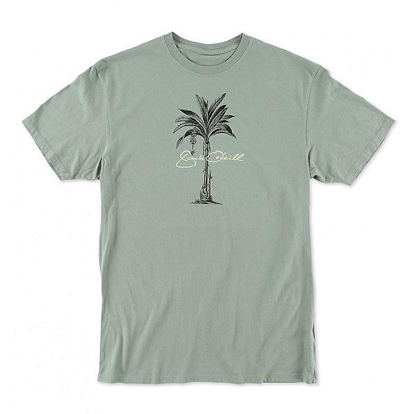 O'Neill Perennial Mens T-Shirt, , 600