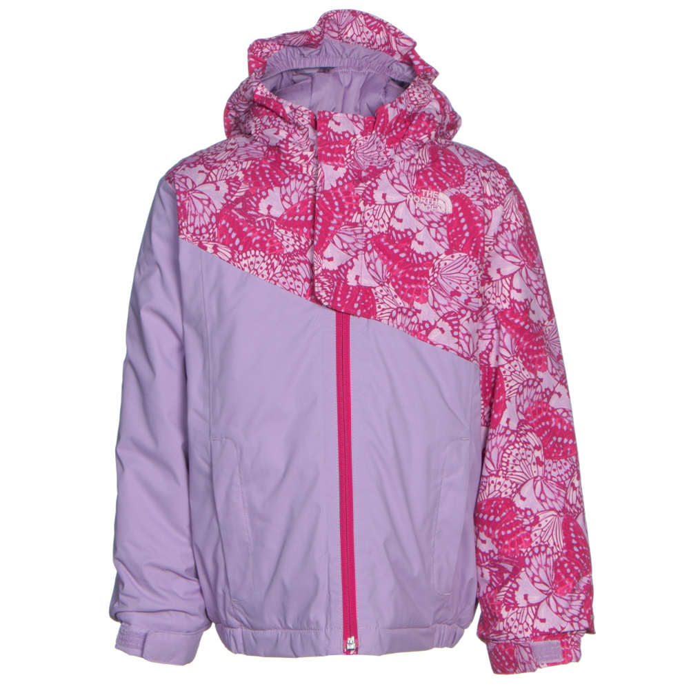 Image of The North Face Casie Insulated Toddler Girls Ski Jacket (Previous Season)