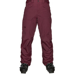 The North Face Freedom Mens Ski Pants, Fig, 256