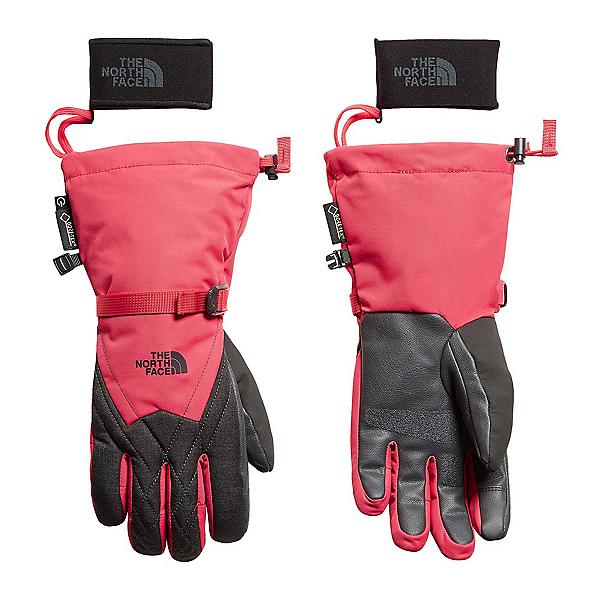 The North Face Montana GORE-TEX Womens Gloves (Previous Season), , 600