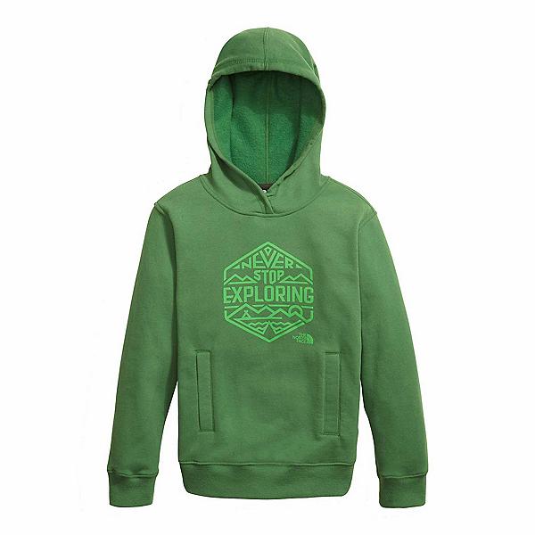 The North Face Logowear Pullover Kids Hoodie, Sullivan Green, 600