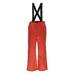 Spyder Troublemaker Tailored Short Mens Ski Pants, Burst, 256