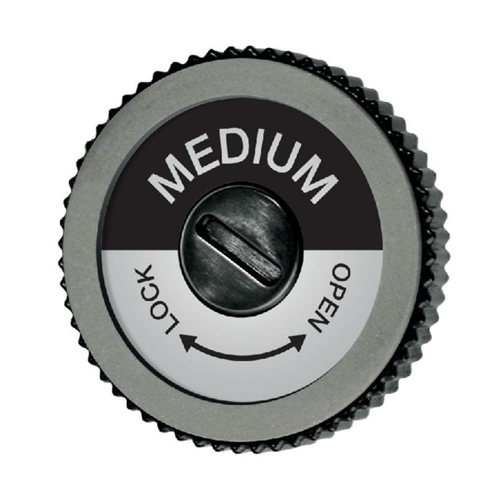 Swix EVO Pro Edge Spare Disc 2020 im test