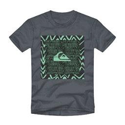 Quiksilver Nano Spano Mens T-Shirt, , 256