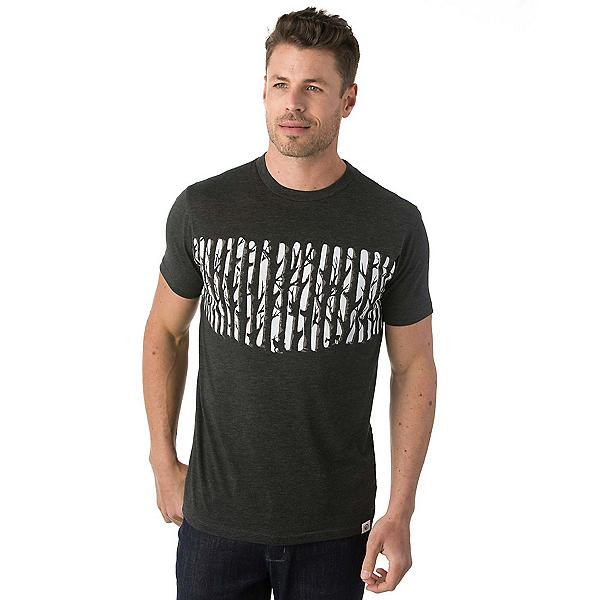 Tentree Waskesiu Tee Mens T-Shirt, , 600