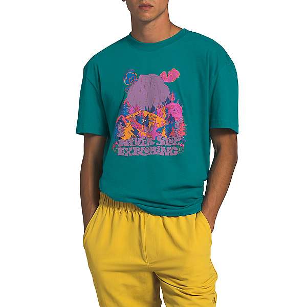 The North Face Logo Haze Mens T-Shirt, , 600
