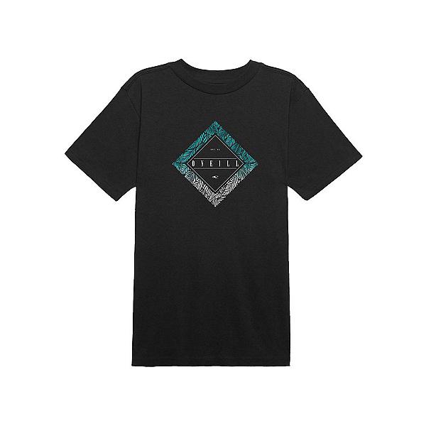 O'Neill Prism S/S Mens T-Shirt, , 600